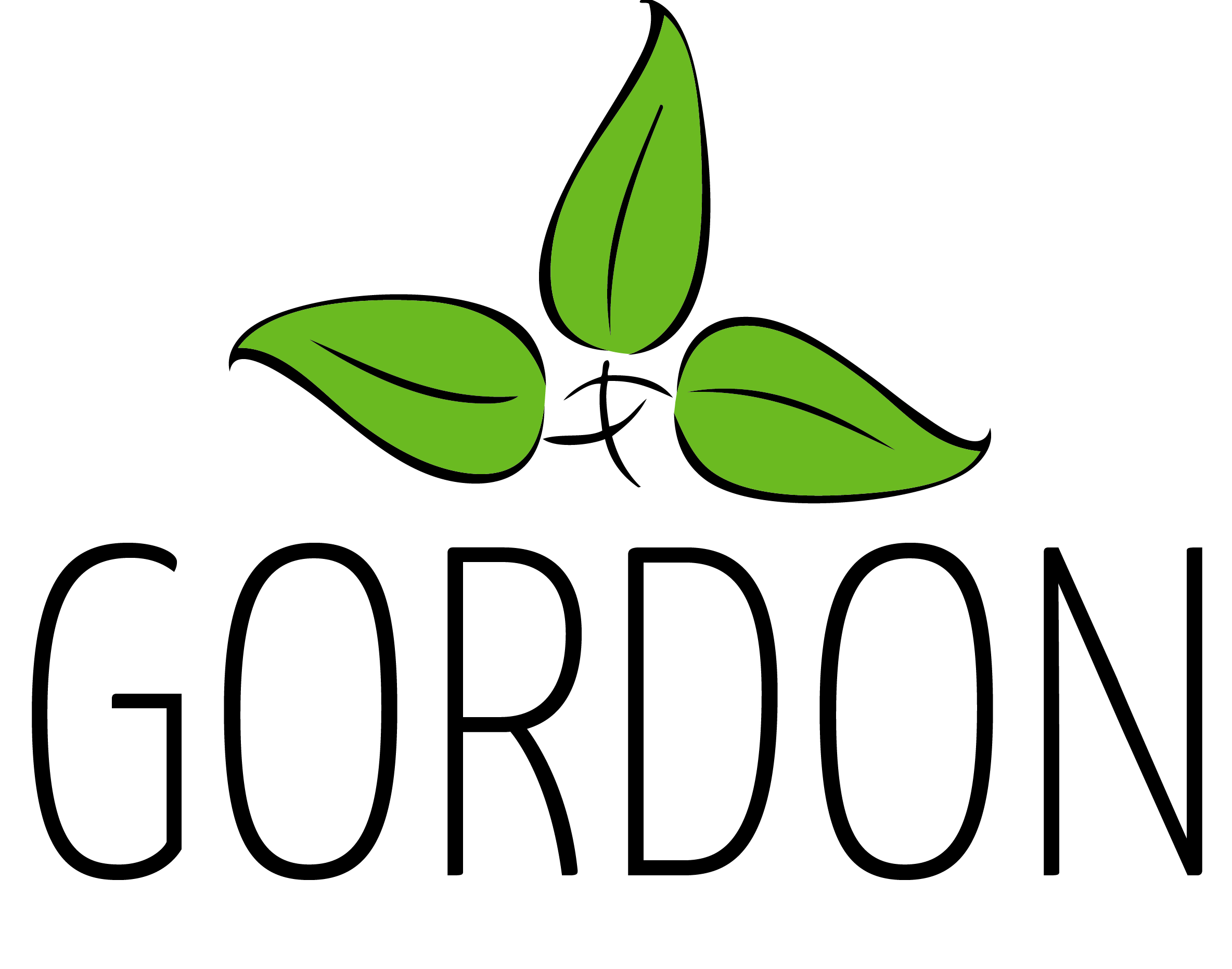 Gordon Salons