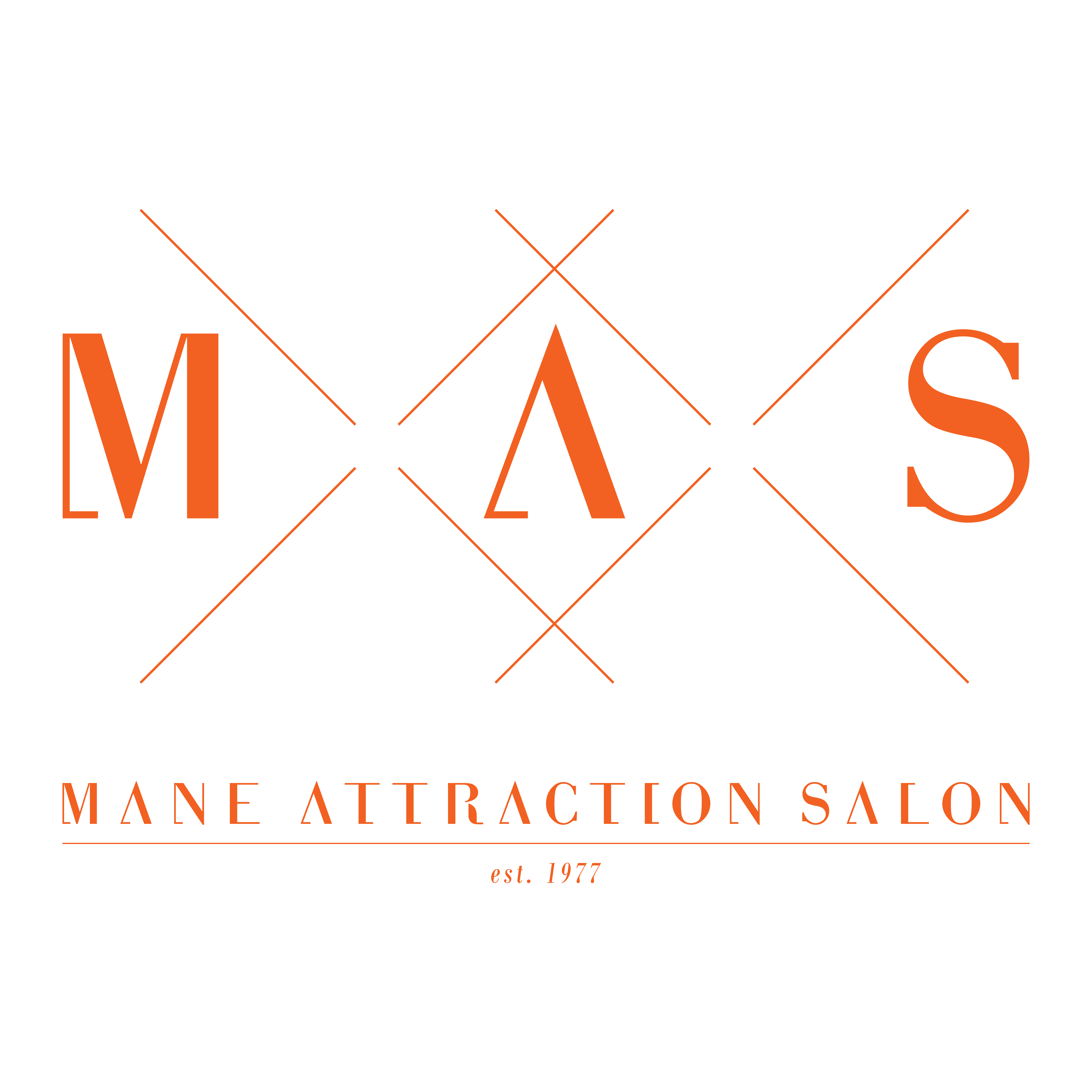 Mane Attraction Salon